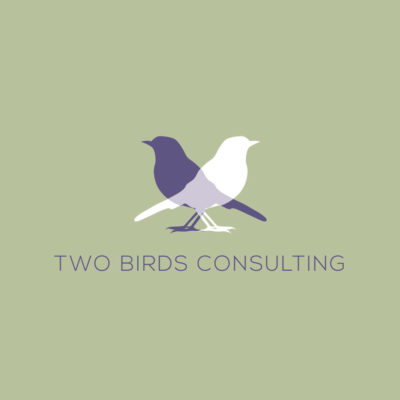 Two Birds Consulting branding